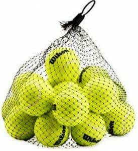 Wilson Wilson Pressureless Tennis Balls